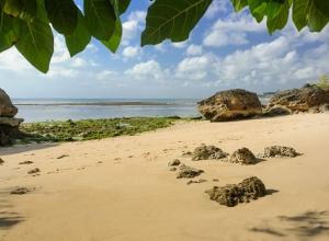 Bayuh Sabbha - beachside
